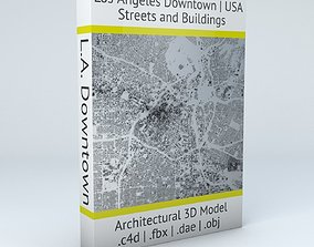 Los Angeles Downtown Streets and Buildings 3D model