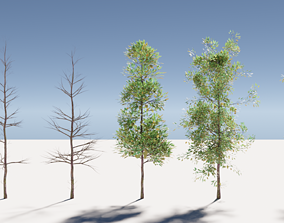 3D Trees vegetation