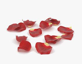 Rose Petals 3D