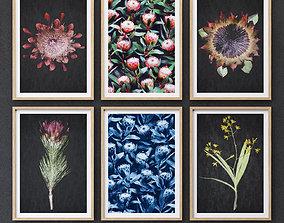 Proteas framed set-01 3D asset