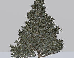 Tree 3D Models game-ready