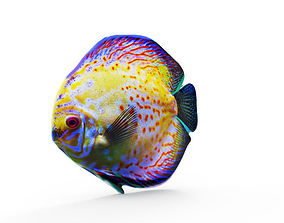 3D printable model Color Fish