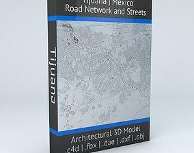 3D Tijuana Road Network and Streets