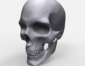 Skull Anatomy Model Printable