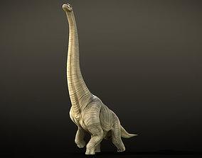 3D model Brachiosaurus Dinosaur Rig and Animations