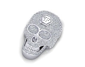 3D model skull pp