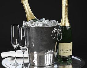 Champagne in Bucket 3D