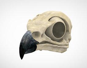 Griffin Skull 3D model