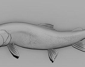 3D print model taimen fish