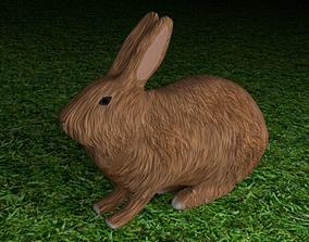fur 3D model Basic Rabbit