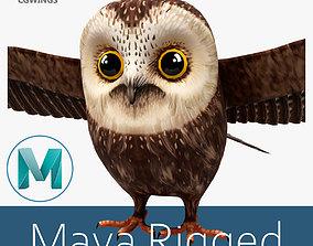 3D asset Owl bird