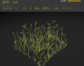 WheatGrass 3D model