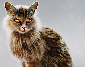 Hyper Realistic Cat model with Fur and shaders ready 3D 1