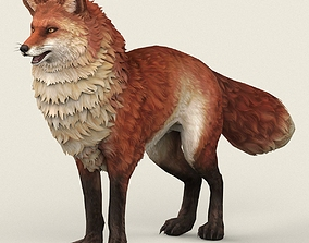 3D asset Game Ready Fox