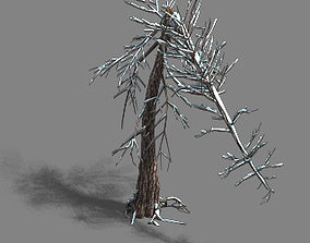 Ice and Snow - Cedar 03 banana 3D