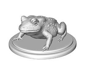 3D print model toad sculpture