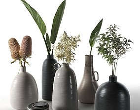 Vases with Plants 3D model