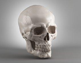 Skull 3d print model halloween