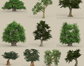 Low Poly Tree Collection 3D asset