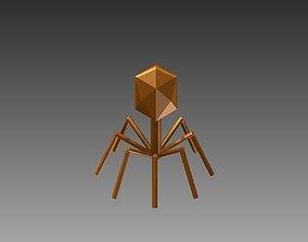 Bacteriophage Model