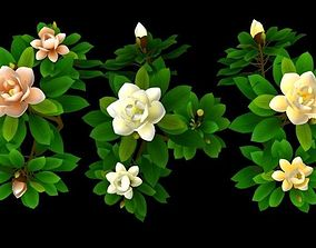 3D asset Flower Magnolia