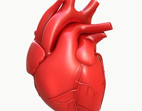 medical Human Heart 3D model