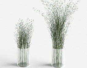 3D model Grass in vases