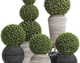 Concrete Tree Topiary - Indoor Plant 221 3D