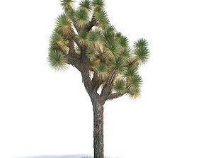 3D model Green Exotic Tree