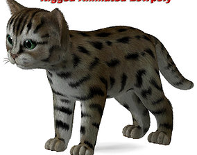 3D model animated Cat Tigre