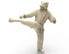 3D print model Dog Roundhouse Kick