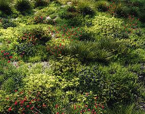 Grass set 1 3D model