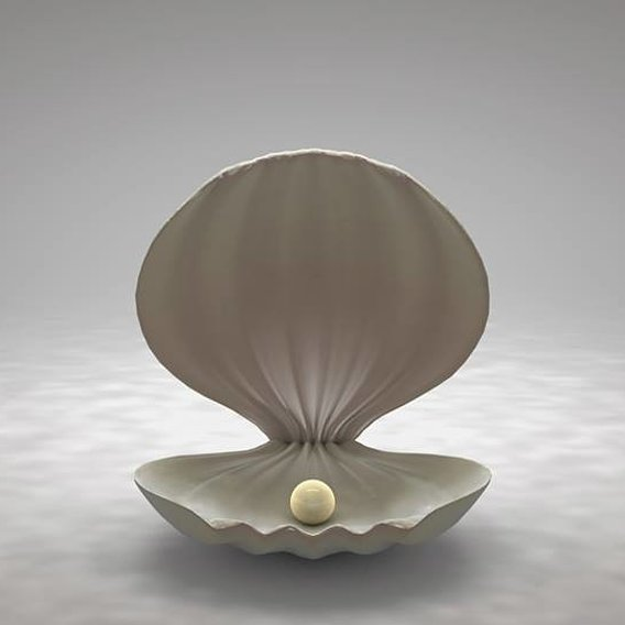 Clamshell with a Pearl