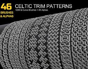 3D 46 Celtic Trim Brushes and Alphas