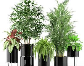 3D model Plants collection 234