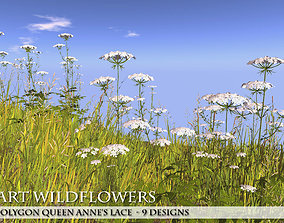 Low Polygon 3D Queen Anne Lace Flowers for Games realtime