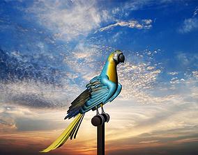 3d Bird model realtime