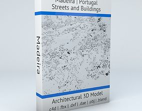 Madeira Streets and Buildings 3D model