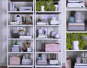 3D model Shelves with decor