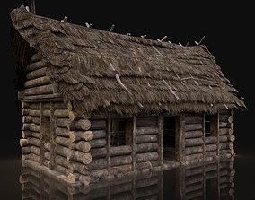 3D model AAA Next Gen Generic Thatched Log House Cottage