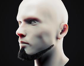 Beard Low Poly 17 3D asset
