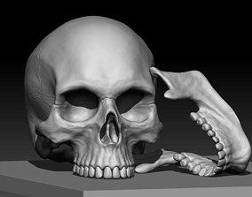 Skull 3D printable model skeleton