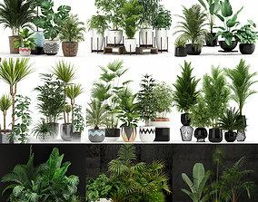 3D Plants collection vol 02