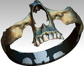 Part Skull Ring Men Woman Gothic 3D print model