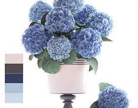 3D Bouquet of blue Hydrangea