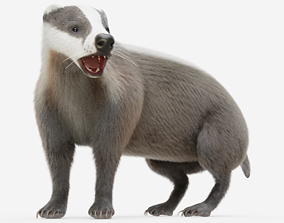 Badger Rigged with Fur 3D model