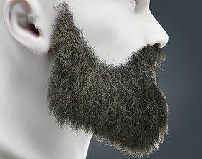 3D asset Beard RealTime 19 Version 2 Low Poly