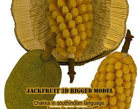 rigged jackfruit 3D rigged model