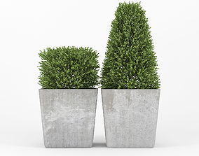 3D Bush concrete pot