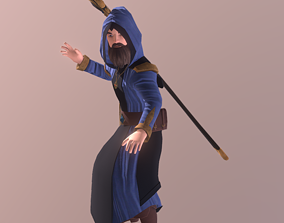 3D Animated Wizard Character Model